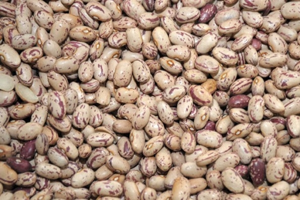 Cranberry beans raw 500gr - Barbounia-0